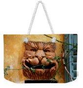 Smiling Cat Mail Box Weekender Tote Bag