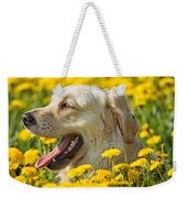 Smiling Dog Weekender Tote Bag