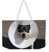 Smiling Dog Weekender Tote Bag