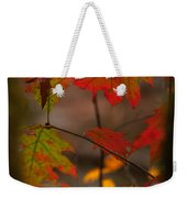 Smoky Mountain Color II Weekender Tote Bag