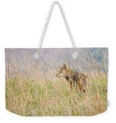 Smoky Mountains Coyote Weekender Tote Bag