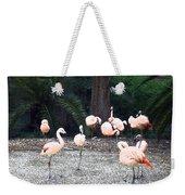 Smudgestick Flamingos Weekender Tote Bag