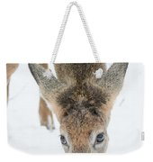 Snacking Deer Weekender Tote Bag
