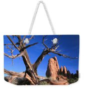 Snag At  Fiery Furnace Labyrinth Arches Weekender Tote Bag