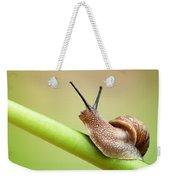 Snail On Green Stem Weekender Tote Bag