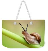 Snail On Green Stem Weekender Tote Bag