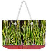 Snakes In A Box Weekender Tote Bag