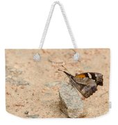 Snout Butterfly  Weekender Tote Bag