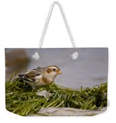 Snow Bunting Pictures 87 Weekender Tote Bag