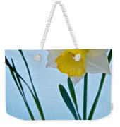 Snow-capped Daffodil On May 21 Near Des Chutes National Forest-or  Weekender Tote Bag