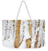 Snow Covered Birch Trees Weekender Tote Bag by John Kelly