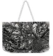 Snow Covered Pine Tree Seen From Below Weekender Tote Bag