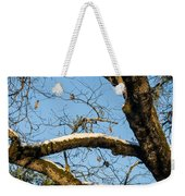 Snow In Oak Weekender Tote Bag