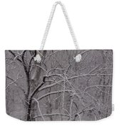 Snow In The Trees At Bulls Island Weekender Tote Bag