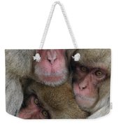 Snow Monkey And Young Weekender Tote Bag