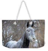 Snow Mule Weekender Tote Bag