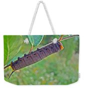 Snowberry Clearwing Hawk Moth Caterpillar - Hemaris Diffinis Weekender Tote Bag