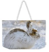 Snowshoe Hare In Winter Weekender Tote Bag