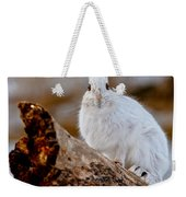 Snowshoe Hare Pictures 131 Weekender Tote Bag