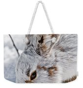 Snowshoe Hare Pictures 133 Weekender Tote Bag