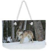 Snowy Day Trek Weekender Tote Bag