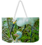 Snowy Egret Tending Young Weekender Tote Bag