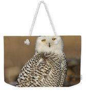 Snowy Owl Female Weekender Tote Bag