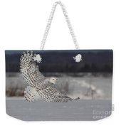 Snowy Owl In Flight Weekender Tote Bag by Mircea Costina Photography