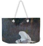Snowy Owl In Florida 11 Weekender Tote Bag