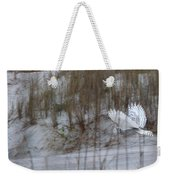 Snowy Owl In Florida 12 Weekender Tote Bag