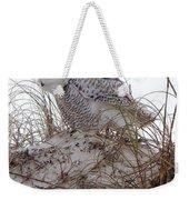 Snowy Owl In Florida 13 Weekender Tote Bag