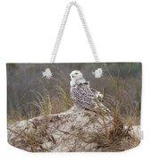 Snowy Owl In Florida 14 Weekender Tote Bag