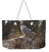 Snowy Owl In Florida 15 Weekender Tote Bag