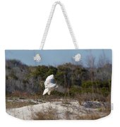 Snowy Owl In Florida 19 Weekender Tote Bag