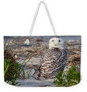 Snowy Owl In Florida 24 Weekender Tote Bag