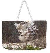Snowy Owl In Florida 4 Weekender Tote Bag