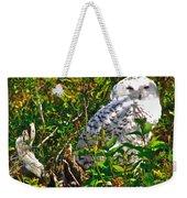 Snowy Owl In Salmonier Nature Park-nl Weekender Tote Bag