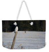 Snowy Owl Landscape Weekender Tote Bag