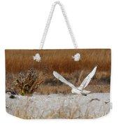 Snowy Owl On The Hunt Weekender Tote Bag