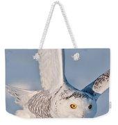 Snowy Owl Pictures 47 Weekender Tote Bag