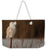 Snowy Owl Pictures 52 Weekender Tote Bag