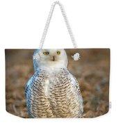 Snowy Owl Weekender Tote Bag