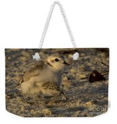 Snowy Plover Transformation Into A Spiderbird 1 Weekender Tote Bag