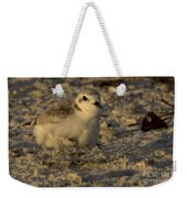 Snowy Plover Transforms Into A Spiderbird 2 Weekender Tote Bag