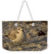 Snowy Plover Transforms Into A Spiderbird 3 Weekender Tote Bag