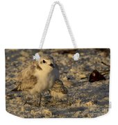 Snowy Plover Transforms Into A Spiderbird 5 Weekender Tote Bag
