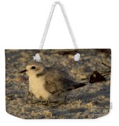 Snowy Plover Transforms Into A Spiderbird 8 Weekender Tote Bag
