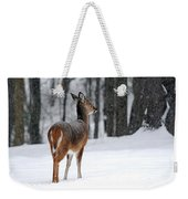Snowy White Tail Weekender Tote Bag