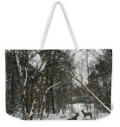 Snowy Wooded Path Weekender Tote Bag