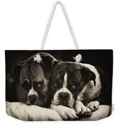 Snuggle Bug Boxer Dogs Weekender Tote Bag by Stephanie McDowell